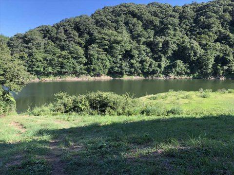 藤井川ダム